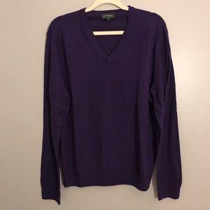 Express 100% Merino Wool vneck long sleeve sweater
